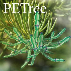 PETree-ICON_01-2